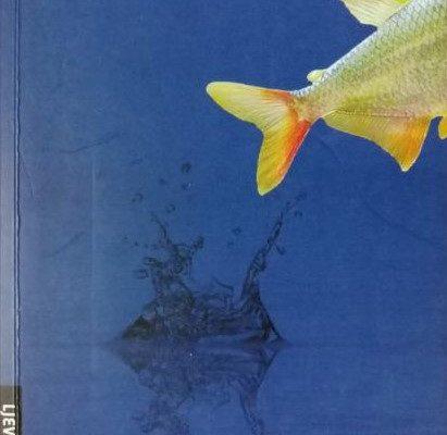 Sanja Lovrenčić: Peștele de aur și Arielul pentru est